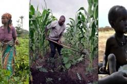Engagement de l'Afrique pour éliminer la faim d'ici 2025