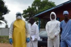 La pénurie alimentaire, autre crise qui menace les pays touchés par le virus Ebola