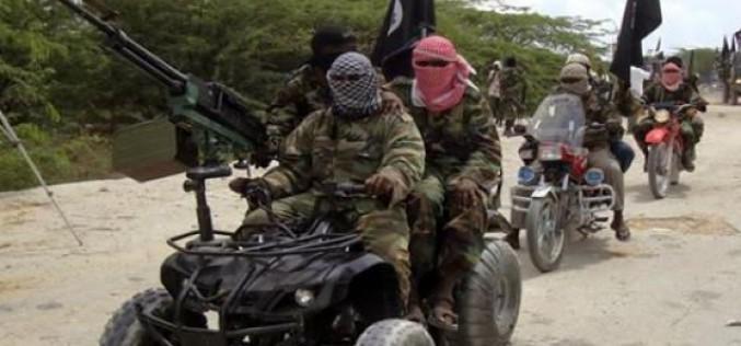 Une cinquantaine de morts dans la prise lundi de Damasak par Boko Haram