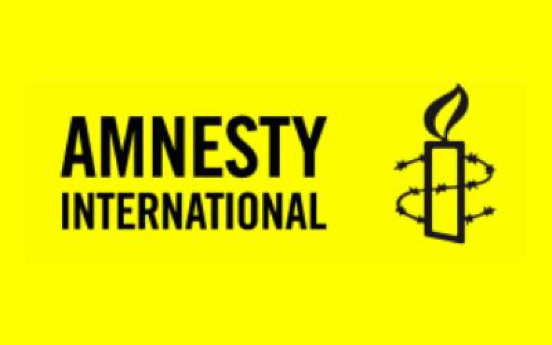 Amnesty international a accusé Israël de crimes de guerre à Gaza