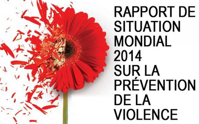 Rapport de situation mondial 2014 sur la prévention de la violence. OMS, PNUD, ONUDC