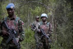 RDC : l'ONU et ses partenaires appellent à agir militairement contre les FDLR