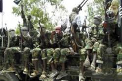 Cameroun: 19 morts dans une attaque de Boko Haram