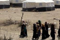 En Irak, plus de 90 000 personnes ont fui les combats dans la région de Ramadi