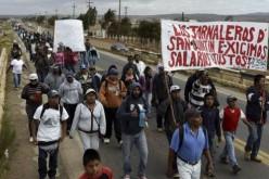 Des ouvriers agricoles au Mexique : « Ça suffit, l'exploitation ! », « Finis les salaires de la faim ! »