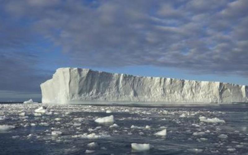 L'impact du réchauffement climatique sur la vie aquatique