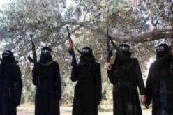 Ces femmes sur lesquelles s'appuie secrètement le groupe terroriste de Daesh (EI) pour se développer