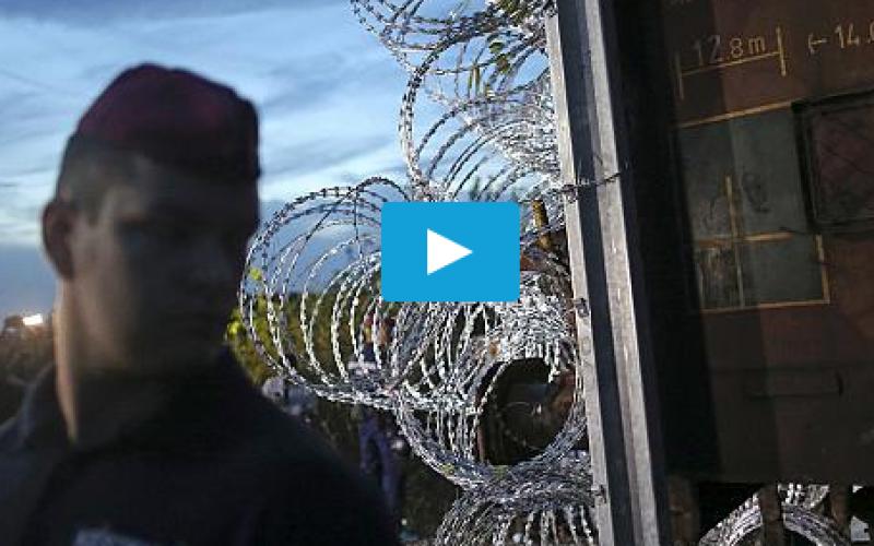 La Hongrie ferme ses frontières, au grand dam des demandeurs d'asile vidéo – Euronews