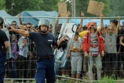"Migrants en Hongrie: une vidéo montre la distribution ""inhumaine"" de nourriture"