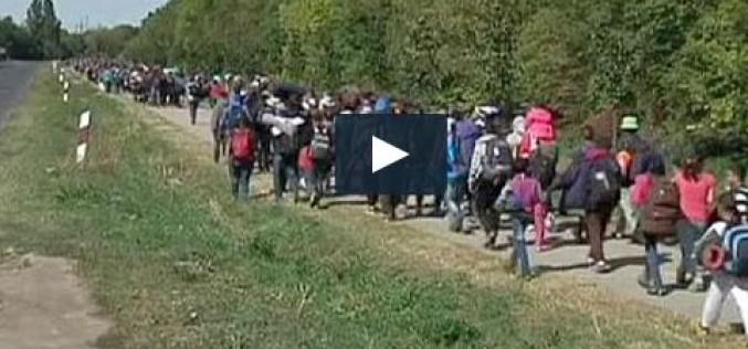 Des milliers de réfugiés arrivent en Autriche après avoir traversé la Hongrie-vidéo