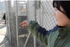 Journal d'une jeune migrante: la vie dans le camp de réfugiés de Moria