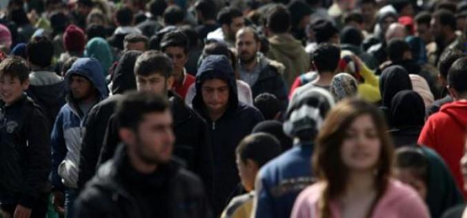 Grèce : citoyens et ONG vont au secours des réfugiés par milliers