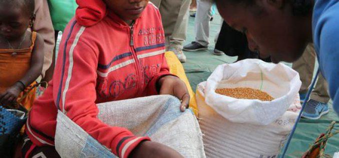 Madagascar : la FAO et le PAM appellent à une action urgente face à l'aggravation de l'insécurité alimentaire