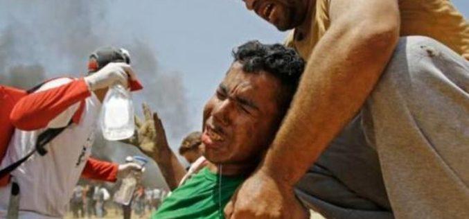 Gaza: Alors que la nouvelle ambassade américaine était inaugurée à Jérusalem, plus de 50 Palestiniens ont été tués lundi par des tirs israéliens lors de manifestations à Gaza