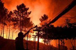 Portugal: un vaste incendie qui ravage le centre du pays, a déjà fait huit blessés