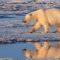 Le réchauffement climatique causera la perte de 80 millions d'emplois et de 2.400 milliards de dollars