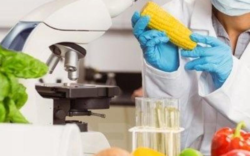 420 000 personnes dans le monde meurent chaque année après avoir ingéré des aliments contaminés
