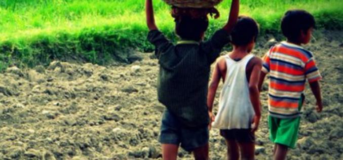 L'Afrique au premier rang de régions astreintes au travail des enfants