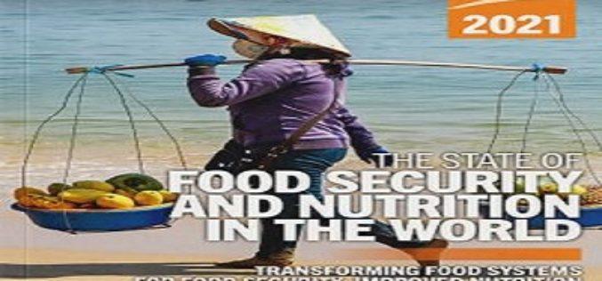 Rapport de l'ONU : « L'État de la sécurité alimentaire et de la nutrition dans le monde 2021 »
