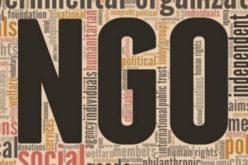 Le rôle des ONG dans la promotion des droits de l'homme