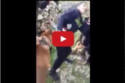 Israël : une vidéo montre deux soldats se servir d'un chien pour menacer un jeune Palestinien