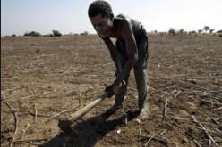 Le changement climatique aura un impact mortel