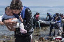 Réfugiés : l'ONU pas très engagée, les ONG dénoncent