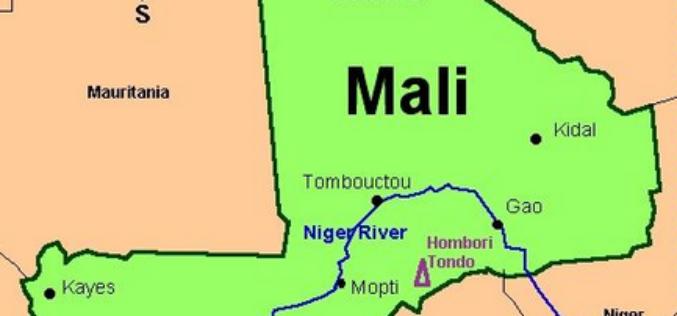 Les défenseurs des droits de l'Homme profondément préoccupés par les arrestations des dirigeants de la transition au Mali