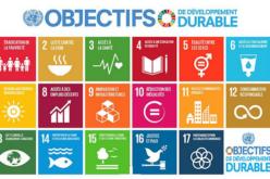 Forum politique de haut niveau sur le développement durable, 6 au 15 juillet