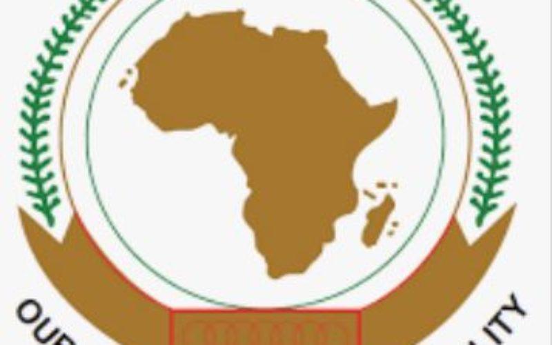 La Commission Africaine des Droits de l'Homme et des Peuples (CADHP) : Mission & Défis
